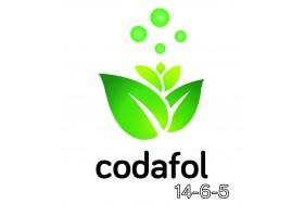 CODAFOL 16-6-5