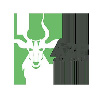 AFRIQUE PHYTO PLUS - Logo